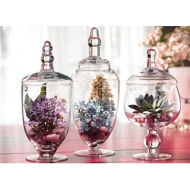 Palais Glassware Clear Glass Apothecary Jars - Set of 3 - Wedding Candy Buffet Containers