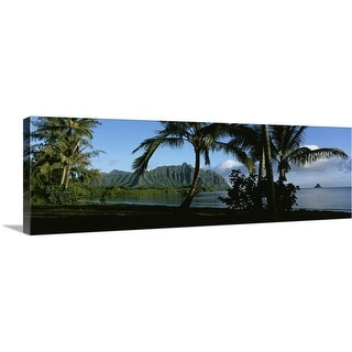 """Palm trees on the waterfront, Kaneohe Bay, Oahu, Hawaii"" Canvas Wall Art"