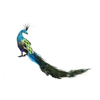 "23.5"" Regal Peacock with Closed Tail Feathers Christmas Decoration"