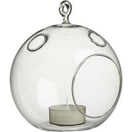 CYS® Plant Terrarium Glass Height 6 inches. Glass Plant Terrarium Orbs, Pack of 6 pcs