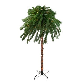 6' Pre-Lit Tropical Artificial Palm Tree - Clear Lights