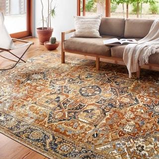 Alexander Home Luciano Bohemian Distressed Oriental Indoor/ Outdoor Rug