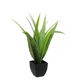 "21.5"" Green and Black Potted Artificial Agave Succulent Plant"