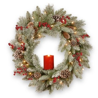 Pre-Lit Snowy Bristle Berry Artificial Christmas Wreath - 24-Inch, Warm White LED Lights/BO