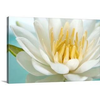 """""""Flowering lotus water lily"""" Canvas Wall Art"""
