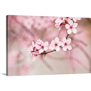 """Pink blossoms."" Canvas Wall Art"