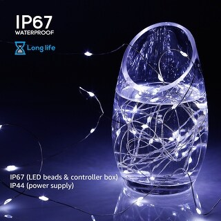 33ft 100LEDs Fairy String Lights Dimmable with Remote Control, Daylight/Warm White