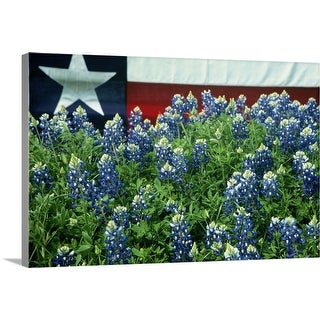 """""""Bluebonnets, Texas state flag in background, USA"""" Canvas Wall Art"""