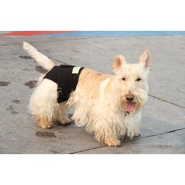 PET ANXIETY AND THERAPEUTIC REAR ( DIAPER) - REAR DIAPER ALSO FITS WITH HEALERS FRONT MODULE