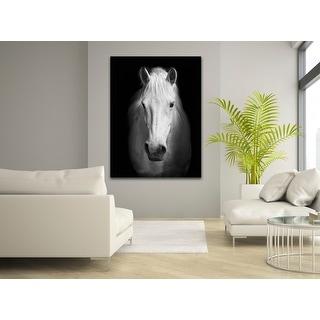 White Horse Face Photography Canvas Art