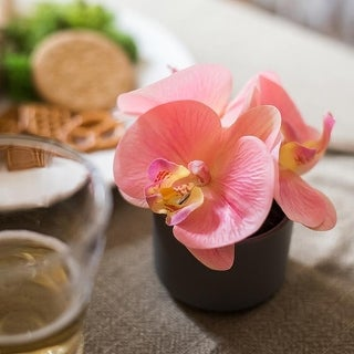 RusticReach Mini Real Touch Potted Orchid in Peach Pink