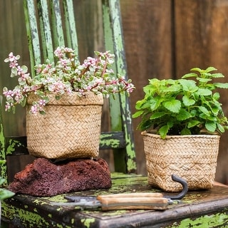 RusticReach Straw Basket Style Concrete Planter