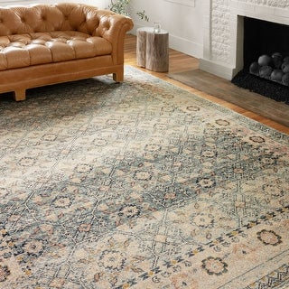 Alexander Home Luxe Shabby Chic Antiqued Distressed Area Rug