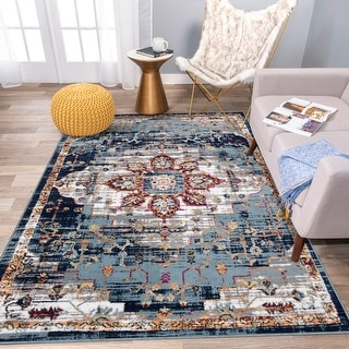 Traditional Distressed Bohemian Area Rug