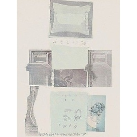 Two Reasons Birds Sing, Ltd Ed Mixed Media (Lithograph & Collage), Rauschenberg