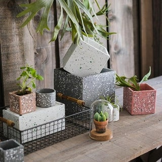 RusticReach Gray Red White Cement Planter in Various Shape Sizes