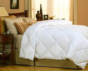 Shop Down Comforters