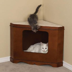 ... having the right cat furniture in your home cat supplies like quality