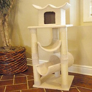 Super fun carpeted cat tree