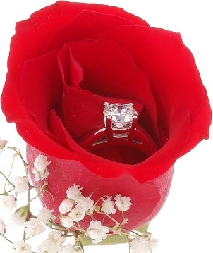 Diamond solitaire engagement ring in a red rose