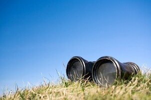 Binoculars abandoned in the grass