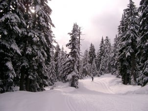 Winter Sports Buying Guide