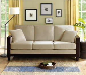 Trendy Sofas and Loveseats