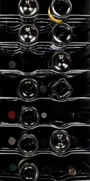 Interior of wine cooler holds various sizes of wine bottles