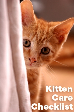 Kitten Care Checklist