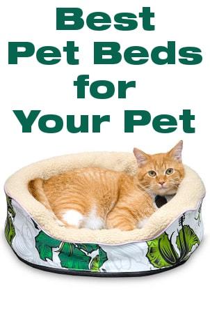 Best Pet Beds for Your Pet