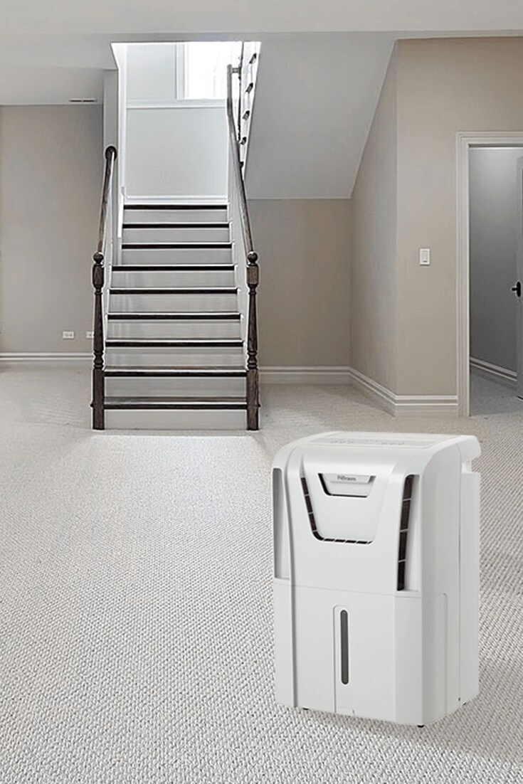 Best Dehumidifiers for Basements