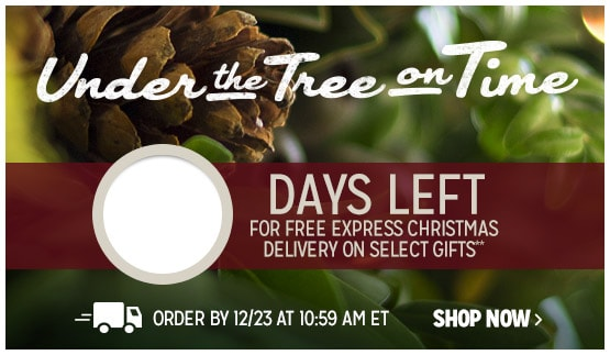 Days left for free express Christmas delivery on select gifts**