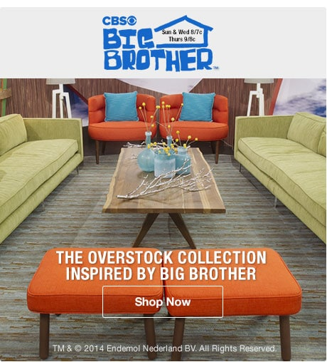 The Overstock Collection Inspired by Big Brother