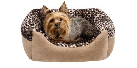 Friends Forever Cuffed Rectangular Cuddler Pet Bed