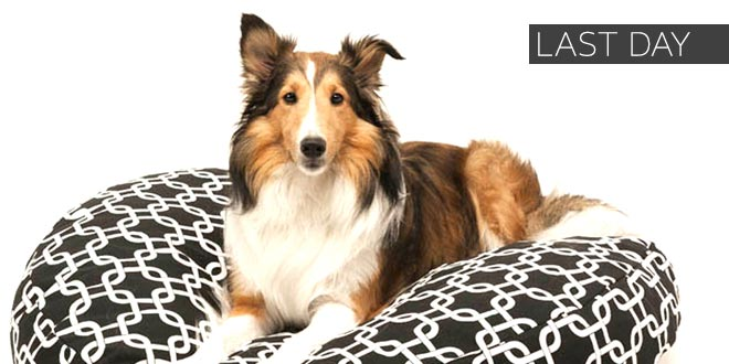 Up to 30% off + Extra 10% off Select Pet Supplies* - Last Day