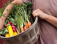 Farm Fresh Delivery