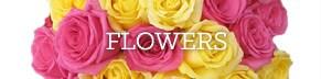 Shop flowers