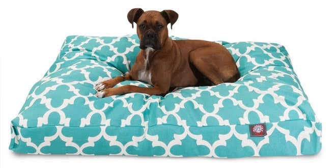 Up to 40% off + Extra 10% off Select Pet Supplies*
