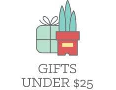 Find gifts under $25