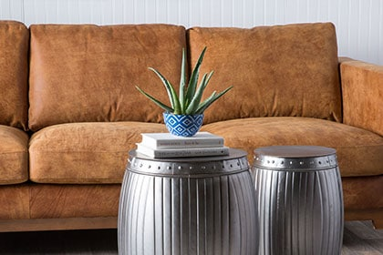 Brown couch with plant and exotic coffee tables