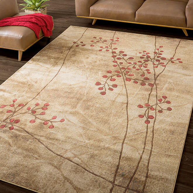 Extra 20% off Featured Area Rugs by Nourison*