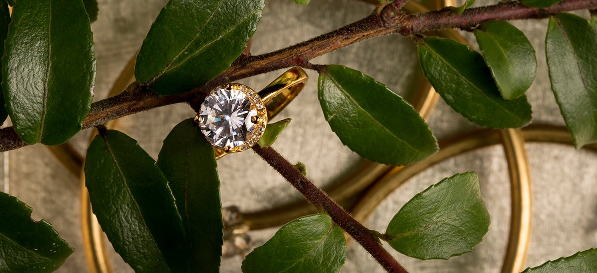 Close up of a round gold diamond ring resting on a branch