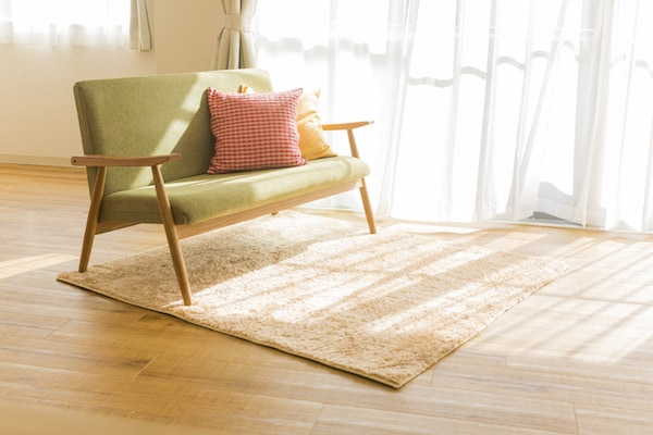 Room with sunlight spilling onto area rug