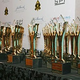 Overstock.com Receives Two 2011 Stevie Awards in Sales and Customer Service Categories