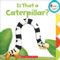 Is That a Caterpillar? (Board book)