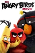 The Angry Birds Movie (DVD)