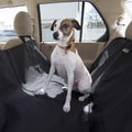Animal Planet Water Resistant Hammock Car Seat Cover