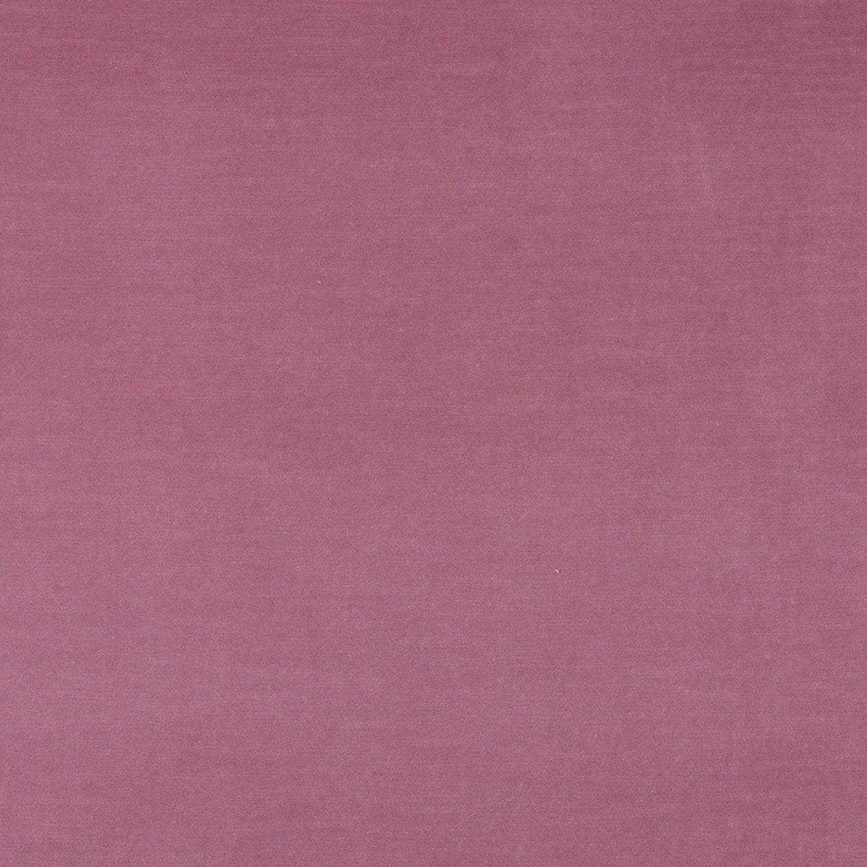 Shop A0001b Pink Authentic Durable Cotton Velvet Upholstery Fabric
