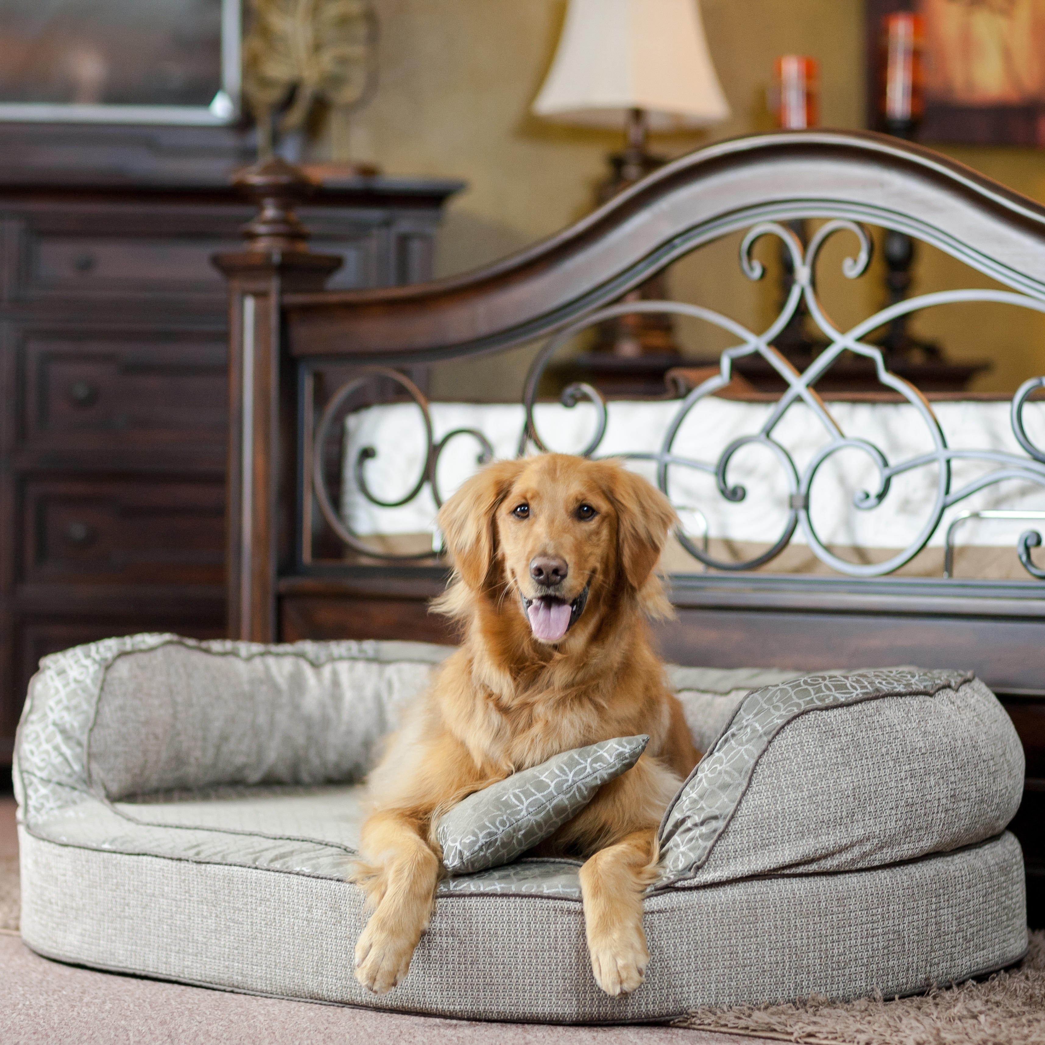 upholstered beds new back product gray bed ii velevet premium kingsthrone antique duchess heart small luxury furniture pet style delux dog