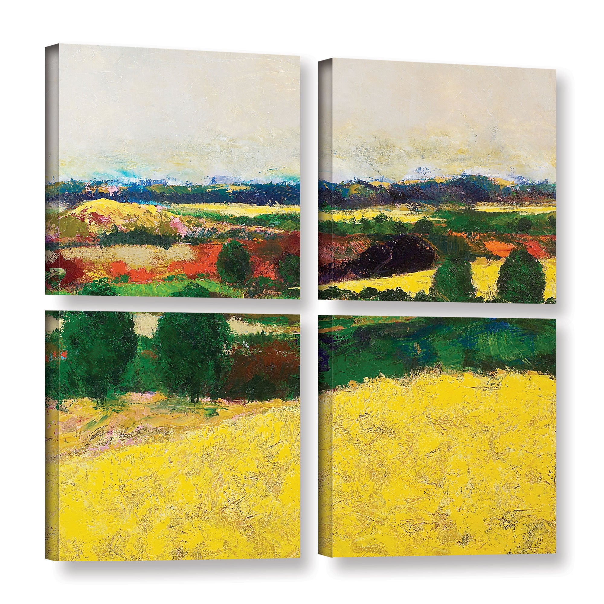 ArtWall Allan Friedlander \'Golden Mound\' 4 Piece Gallery-wrapped ...